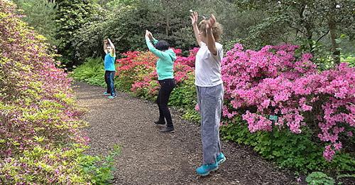 cours de gymnastique en plein air vita-gv